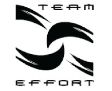 TEAM EFFORT Incorporated company